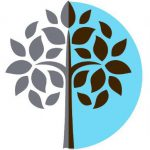 Northfield Wealth   Independent Financial Advisers   Leicestershire